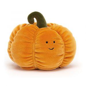 Courge Vivacious Vegetable Pumpkin