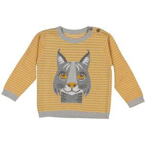 Pull Lynx 4 an coton laine