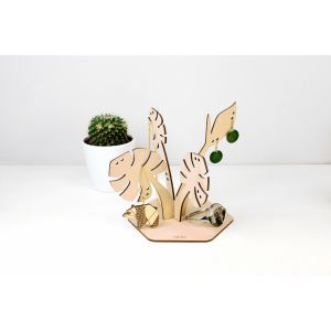 Plantes à bijoux - Déliciosa